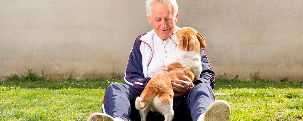 Animales de compañía y personas mayores